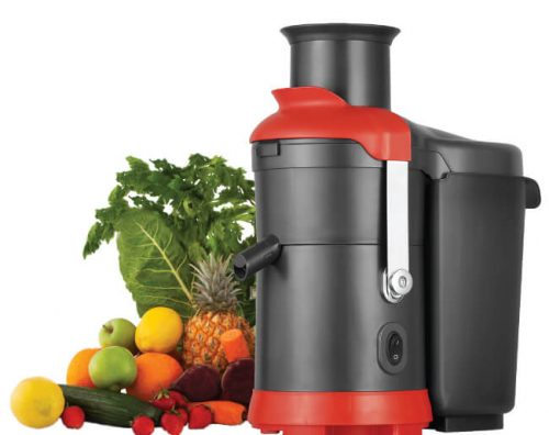 DNA Commercial Juicer with Fruit